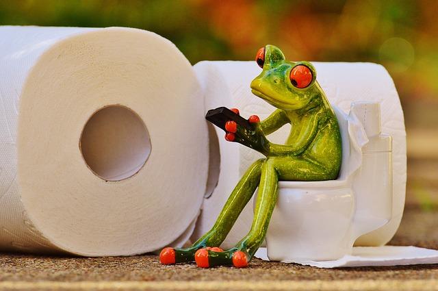 frog-1037248_640