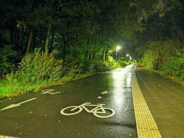Radschnellweg an derAuweide?